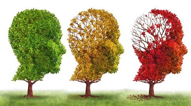 Novedades acerca del Alzheimer ¿La memoria es recuperable?